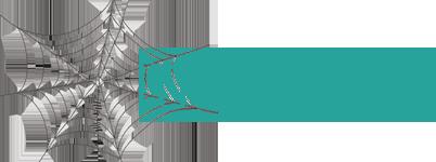 Logo Ingenieus