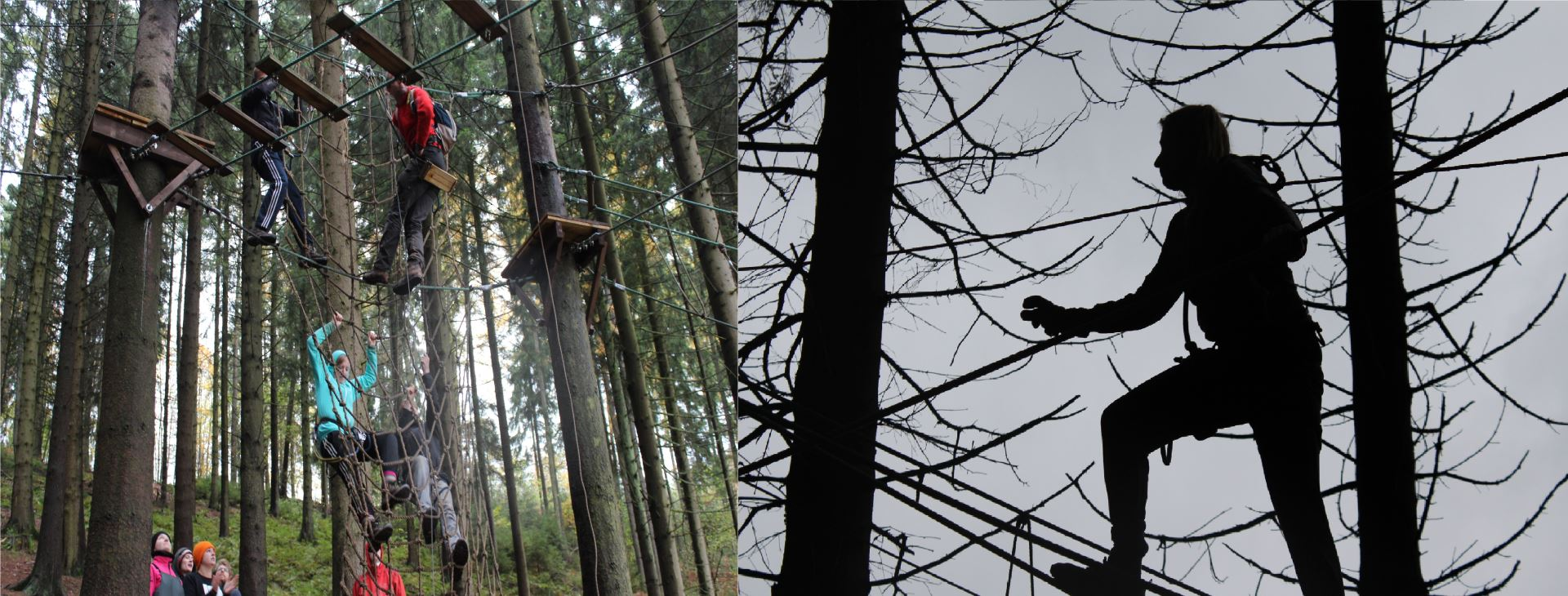 Touwbanenparcours / high rope parcours
