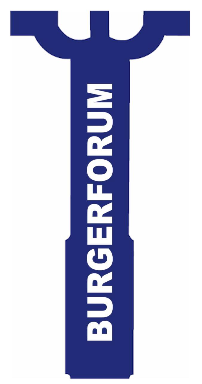 Logo Burgerforum Losser