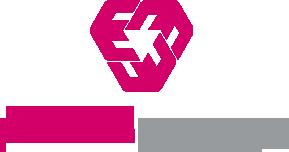 logo perfectmanage