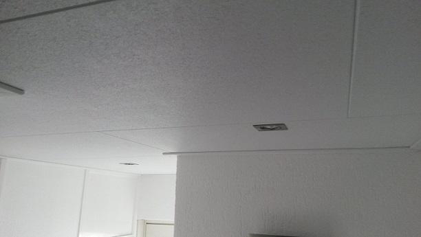 Agnes Plafondplaten Badkamer : Plafond badkamer agnes