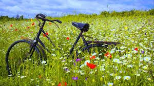 Knooppunt voor wandel en fiets tochten