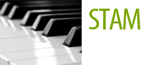 Logo Stam Muziek