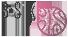 Logo B-Silk